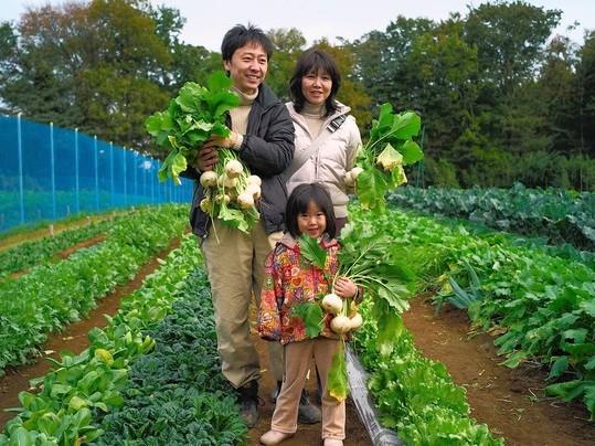 Kết quả hình ảnh cho nông thôn và thành thị Nhật Bản