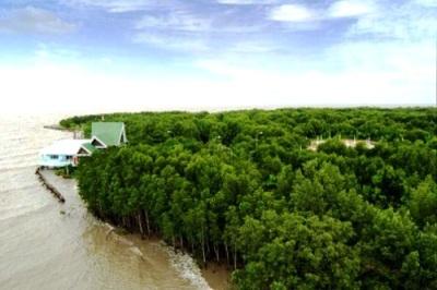 Vườn Quốc gia Mũi Cà Mau là Khu Ramsar của thế giới