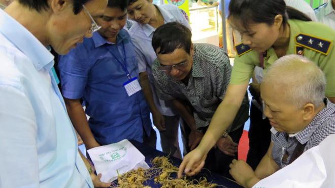 Một phiên chợ sâm Ngọc Linh người dân thu hơn 4,5 tỷ đồng