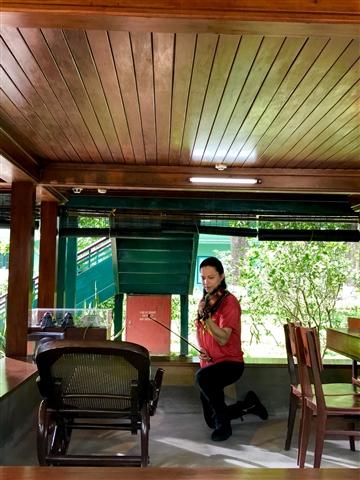 Hình ảnh Nghệ sỹ Violin Anh Tú quỳ trước chiếc Ghế Chao khi xưa Bác vẫn hay nằm nghỉ nơi Nhà sàn, để tấu nên những khúc nhạc kính dâng lên Bác.