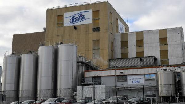 Pháp thu hồi 7.000 tấn sữa trẻ em do nghi ngờ nhiễm Salmonella