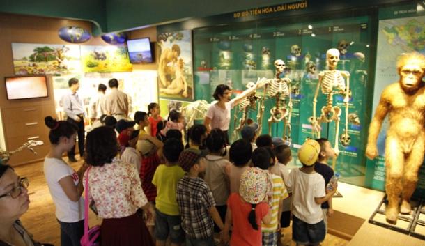 Image result for bảo tàng thiên nhiên việt nam