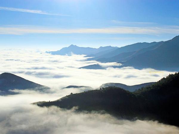 Thiên đường' mây Tà Xùa đẹp mê hồn