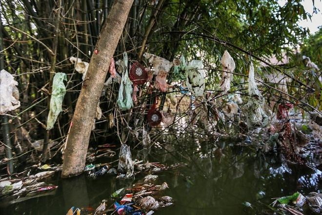 Hình ảnh thảm họa nylon và nhựa dùng một lần đang xâm chiếm thế giới - Ảnh 9